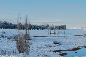 Cot-6-pan-view-snow-Aug-11-2