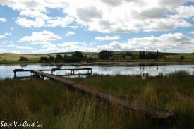Jetty-at-Wordsworth-waters-2009